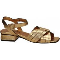 Chaussures Femme Sandales et Nu-pieds Carmens Padova SARI RAW LUX oro
