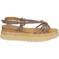 Chaussures Femme Sandales et Nu-pieds PALOMA BARCELÓ ACARA LORY glicine