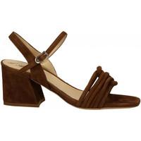 Chaussures Femme Sandales et Nu-pieds L'arianna CAMO sigaro