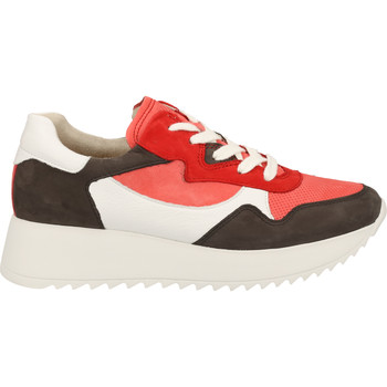 Chaussures Femme Baskets basses Paul Green Sneaker Coral