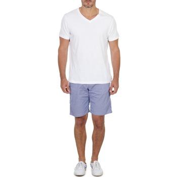 Shorts & Bermudas Franklin & Marshall GAWLER Bleu / Beige 350x350