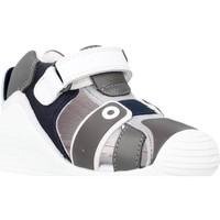 Chaussures Fille Sandales et Nu-pieds Biomecanics 212144 Gris