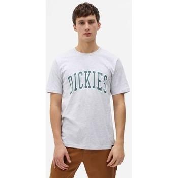 Vêtements Homme T-shirts manches courtes Dickies T-shirt  Aitkin gris chiné/vert