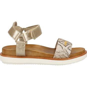 Chaussures Femme Sandales et Nu-pieds Scapa Sandales Platinum