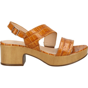 Chaussures Femme Sandales et Nu-pieds Wonders Sandales Cognac