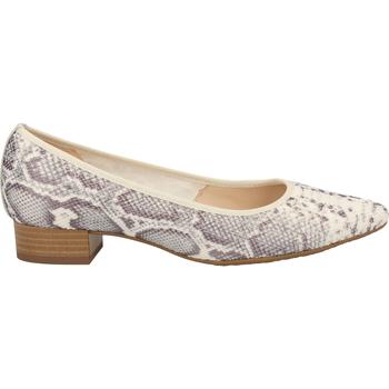 Chaussures Femme Escarpins Peter Kaiser Escarpins Grau