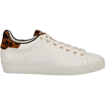 Chaussures Femme Baskets basses Högl Sneaker Weiß/Gelb