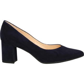 Chaussures Femme Escarpins Peter Kaiser Escarpins Notte