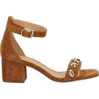 Chaussures Femme Sandales et Nu-pieds SPM Sandales Cognac