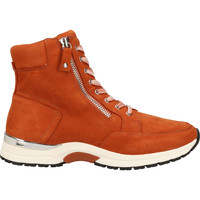 Chaussures Femme Boots Caprice Stiefelette Marron