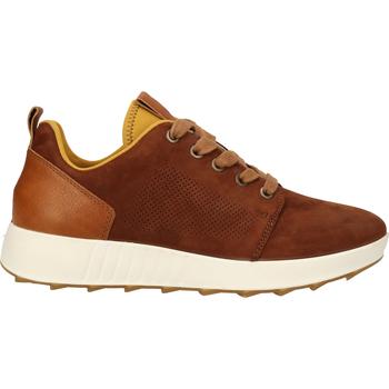 Chaussures Femme Baskets basses Legero Sneaker Cognac
