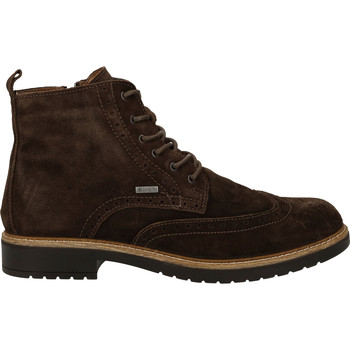 Chaussures Homme Boots Salamander Bottines Caffe