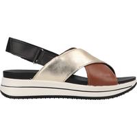 Chaussures Femme Sandales et Nu-pieds IgI&CO Sandales Schwarz/Braun