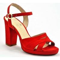 Chaussures Femme Escarpins Sofia Costa SC1438ROUGE ROUGE