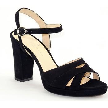 Chaussures Femme Escarpins Sofia Costa SC1438NOIR noir