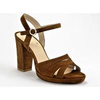 Chaussures Femme Escarpins Sofia Costa 10278 MARRON
