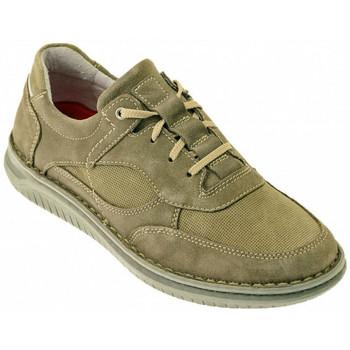 Chaussures Homme Baskets montantes Zen DODO Sneakers Multicolore