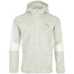 Vêtements Homme Sweats Puma Evostripe FZ Hoodie gris