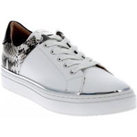 Chaussures Femme Baskets basses Adige QUENTIN ICE