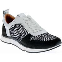 Chaussures Femme Baskets basses Adige VANILLE WHITE