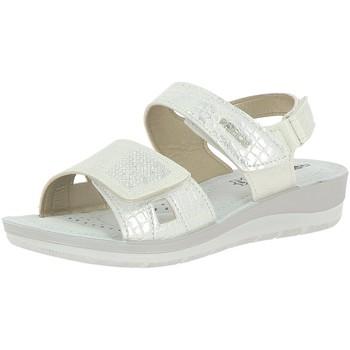 Chaussures Femme Sandales et Nu-pieds Rohde 1366 Gris