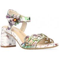 Chaussures Femme Sandales et Nu-pieds Laura Vita Sandale Heco 13 blanc