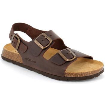 Chaussures Homme Sandales et Nu-pieds Grunland SANDALES GRÜNLAND HOMMES - 0396 ACAJOU Marron