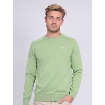 Vêtements Pulls Ritchie Pull fin col rond coton ARTHUR Vert