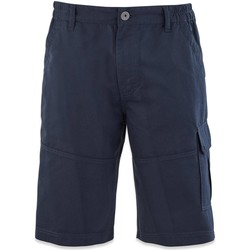 Vêtements Homme Shorts / Bermudas TBS FUPPABER Bleu marine