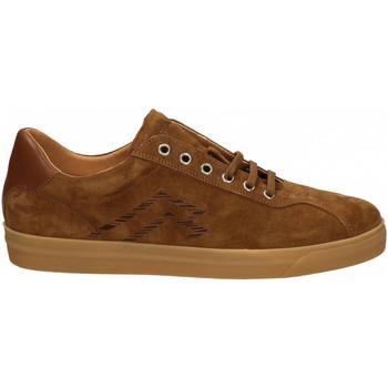 Chaussures Homme Baskets basses Frau AMALFI toffee-ambra