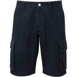 Vêtements Homme Shorts / Bermudas Asquith & Fox AQ054 Bleu marine