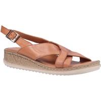 Chaussures Femme Sandales et Nu-pieds Hush puppies  Marron