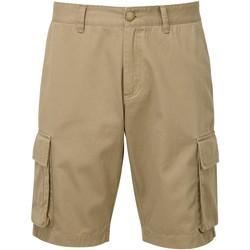 Vêtements Homme Shorts / Bermudas Asquith & Fox AQ054 Kaki