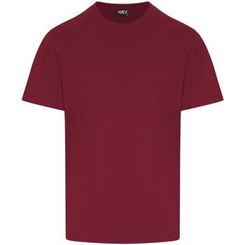 Vêtements Homme T-shirts manches courtes Pro Rtx RX151 Bordeaux