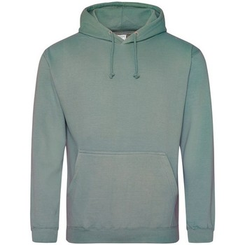 Vêtements Sweats Awdis College Gris bleu