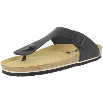 Chaussures Homme Tongs Plakton BOLERO Noir