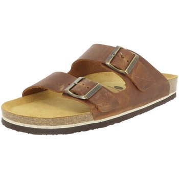 Chaussures Homme Mules Plakton BARNA CAMEL