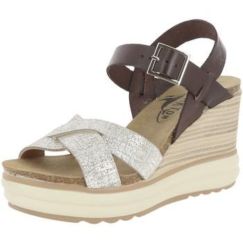 Chaussures Femme Sandales et Nu-pieds Plakton PLANTIO Marron