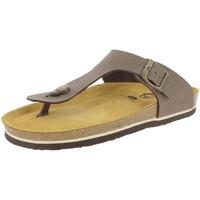 Chaussures Homme Tongs Plakton BOLERO Marron