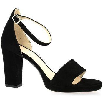 Chaussures Femme Sandales et Nu-pieds Sofia Costa Nu pieds cuir velours Noir