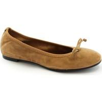 Chaussures Femme Ballerines / babies Frau FRA-CCC-7050-BR Marrone