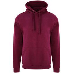 Vêtements Homme Sweats Pro Rtx RX350 Bordeaux