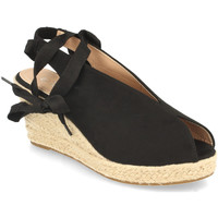Chaussures Femme Sandales et Nu-pieds Prisska DFY1123 Negro