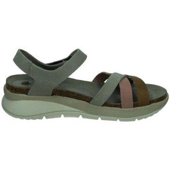 Chaussures Femme Sandales et Nu-pieds Interbios  Gris