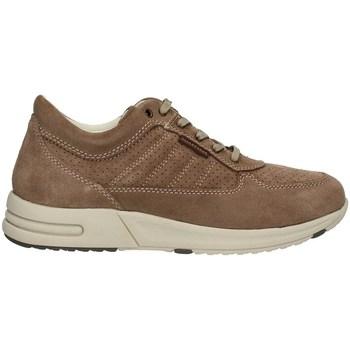 Chaussures Homme Baskets montantes Valleverde 17847PE21 faible Homme Gris
