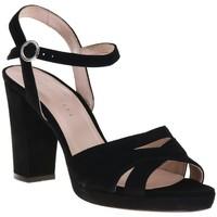 Chaussures Femme Sandales et Nu-pieds Sofia Costa 1438 Noir