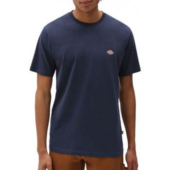 Vêtements Homme T-shirts & Polos Dickies Tee-shirt Bleu