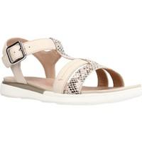 Chaussures Femme Sandales et Nu-pieds Geox D SANDAL HIVER B Beige