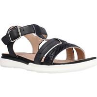 Chaussures Femme Sandales et Nu-pieds Geox D SANDAL HIVER B Noir