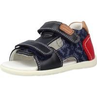 Chaussures Garçon Sandales et Nu-pieds Garvalin 212603 Bleu